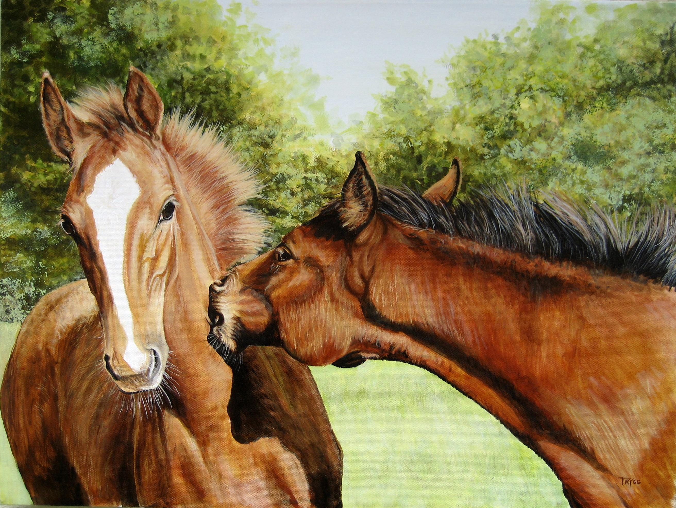 Wonderful Wallpaper Horse Art - foal-frolic-18x24  Perfect Image Reference_809524.jpg