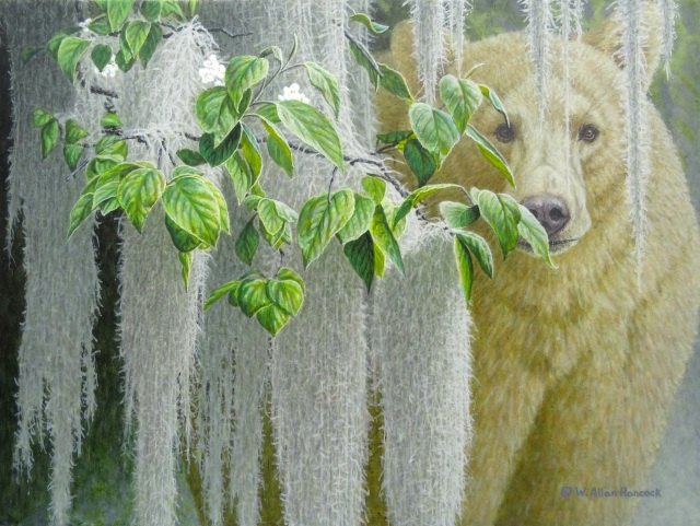 "New works by Allan Hancock including ""Sanctuary - Spirit Bear"" now at the Birthplace of B.C. Gallery"